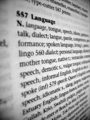 Language in the dictionary