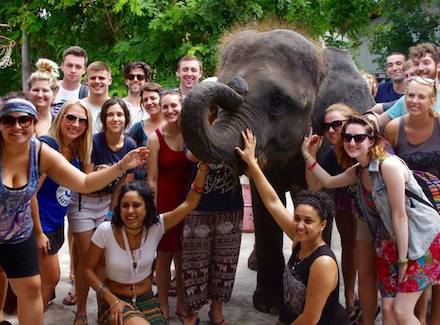 THAI Elephant.jpg