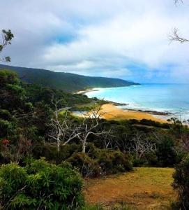 Sarah traveled to the Great Ocean Road, in Lorne, Australia